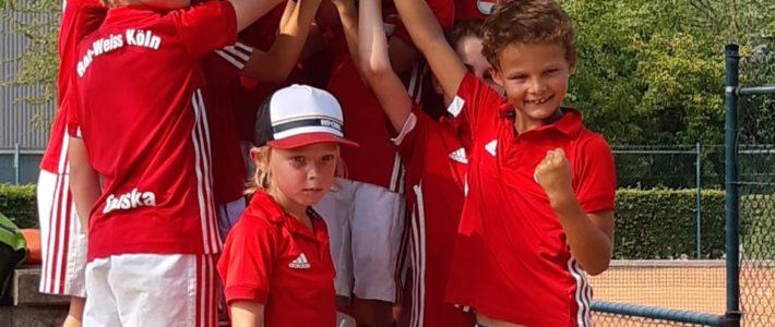 D-Knaben siegreich beim Sommer Cup 2019 des Kahlenberger HTC